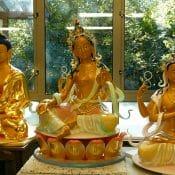 Kadam Dharma comes to Japan