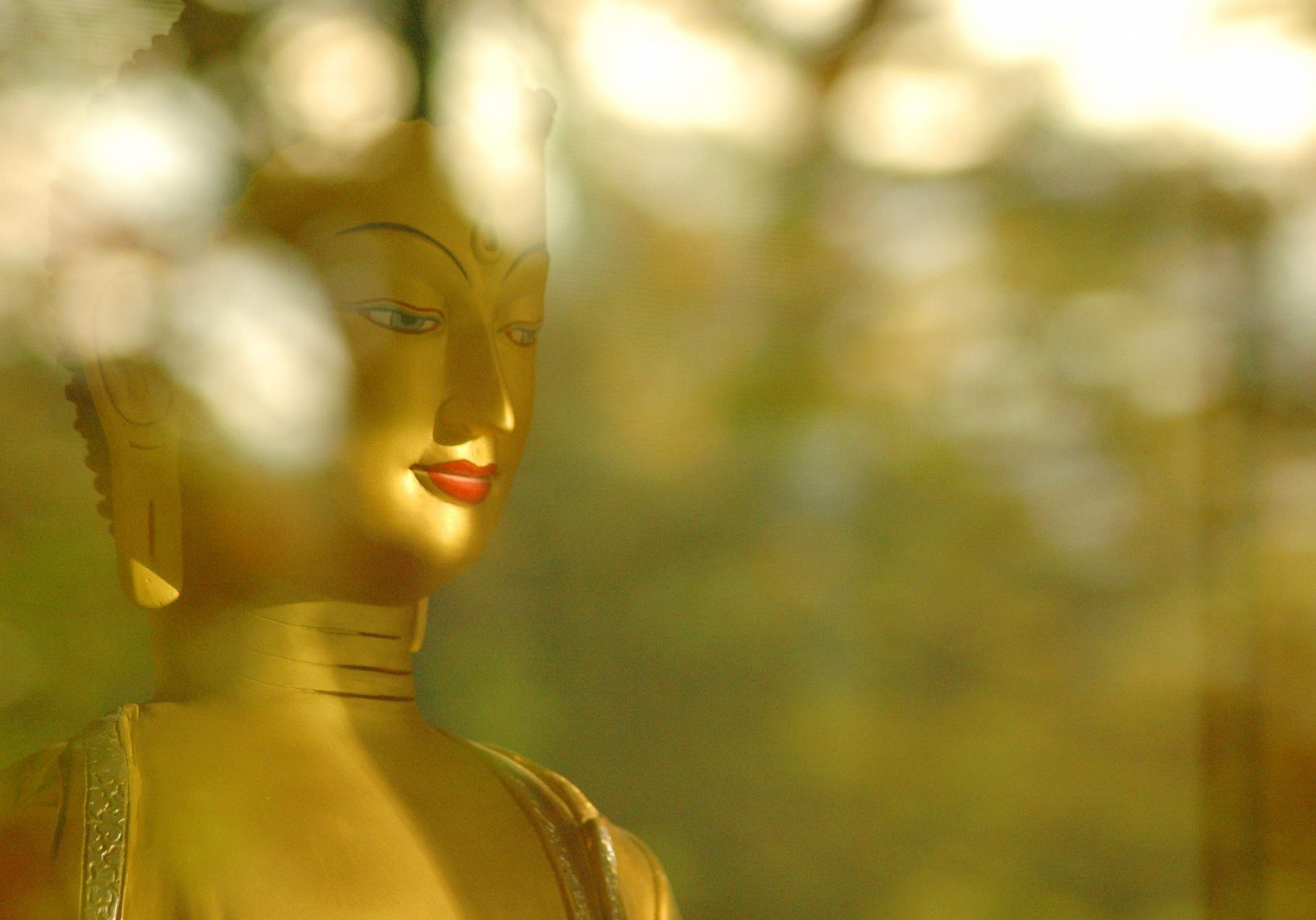 Buddha-Shakyamuni-With-Light-And-Shadows-ASSETkyd3a2dn3bbvag-scaled
